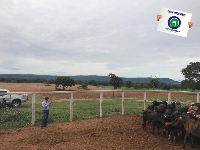 Fazenda em chapada dos guimarães - Foto 8