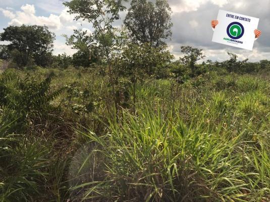 Fazenda 1400 ha na região de cáceres - Foto 3