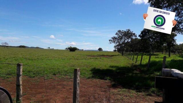 Fazenda 1.650 ha sentido caceres - Foto 13