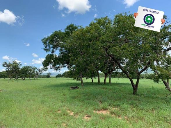 Fazenda 362,27ha acorizal - Foto 7