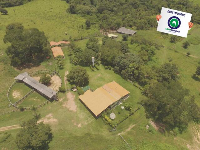 Fazenda 162 ha região de acorizal - mt - Foto 2