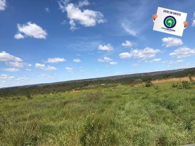 Fazenda 1000 ha no manso - Foto 9