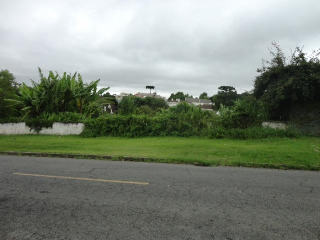 Terreno para alugar em Vista alegre, Curitiba cod:02291.003 - Foto 4