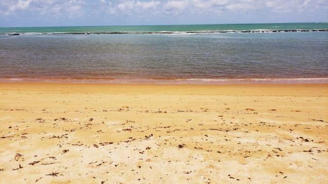 Vendo Terreno 432 m² Corais do Sonho Verde Condomínio Fechado Beira-mar em Paripueira - Foto 12