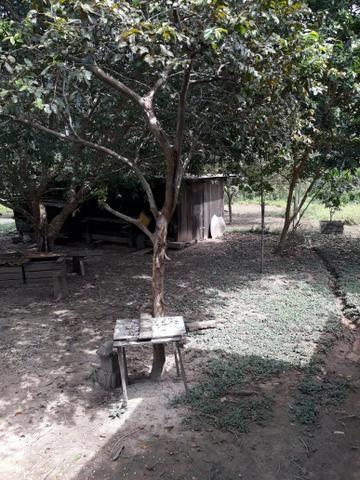 Vendo chácara - Foto 2