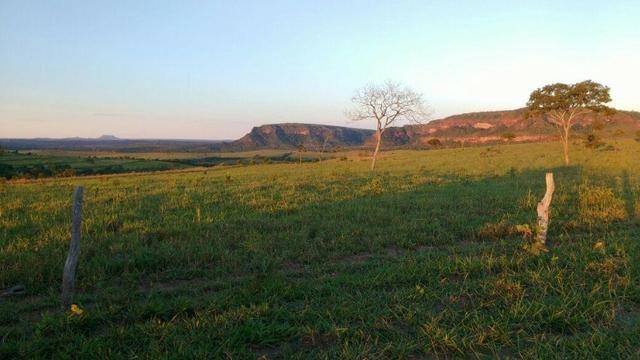 Fazenda Guiratinga MT 6.080 Ha - Foto 9