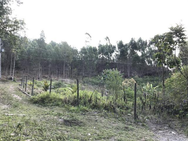 Vendo Fazenda - Foto 18