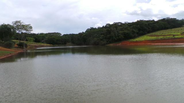 Sítio 22 hectares em Planalmira - Foto 4