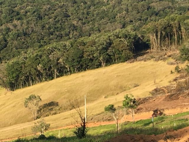 GE Mairiporã 1000m2 lindo terreno por R$60.000 á vista.GE - Foto 2
