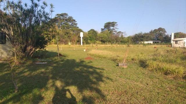 Área Proxima a UFMS - Foto 19