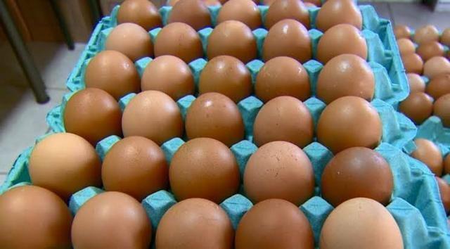 Ovos - Foto 2