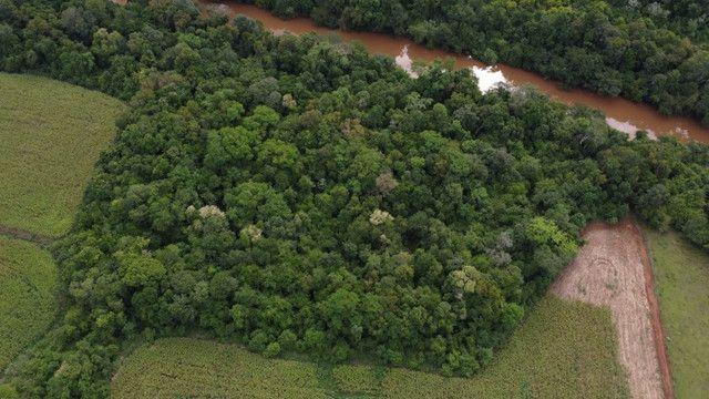 Chácara com acesso ao rio Uruguai 60000 m² barra do lajeado - Foto 5