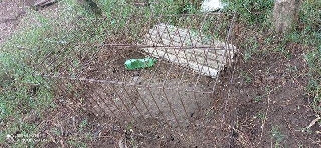 Passeadores frentes de gaiolas viveiros galos canil - Foto 3