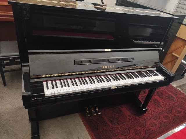 Final Semana Varias Promoções Pianos Acesse Nosso Site CasaDePianos  - Foto 5