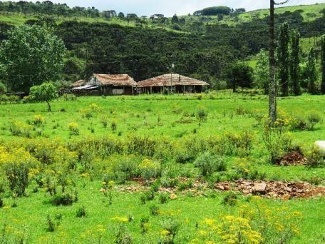 Fazenda em Urubici - Foto 11