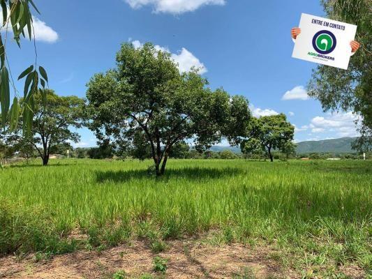 Fazenda 362,27ha acorizal - Foto 5