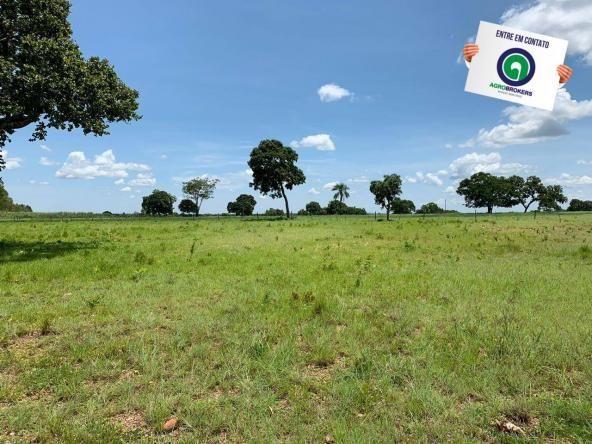 Fazenda 362,27ha acorizal - Foto 3
