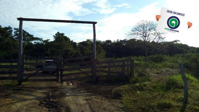 Fazenda na região livramento - Foto 11