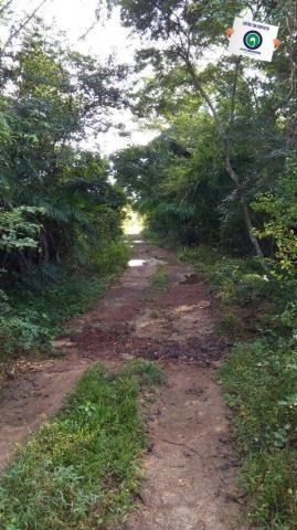 Fazenda na região livramento - Foto 8