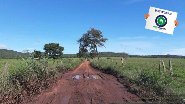 Fazenda 1.650 ha sentido caceres - Foto 10