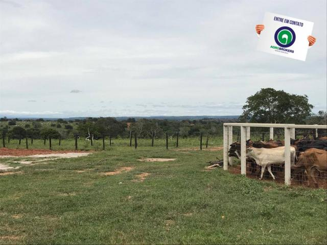 Fazenda em chapada dos guimarães - Foto 10