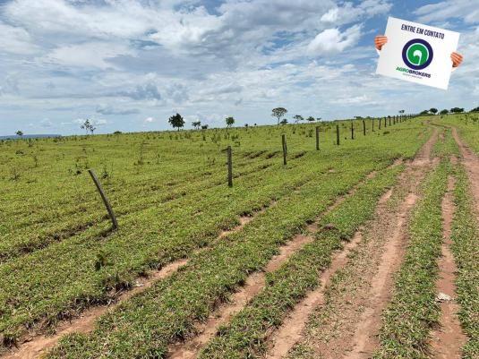 Fazenda 100 ha região de bom jardim - Foto 7