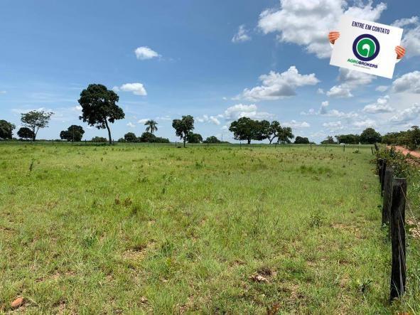 Fazenda 362,27ha acorizal - Foto 6