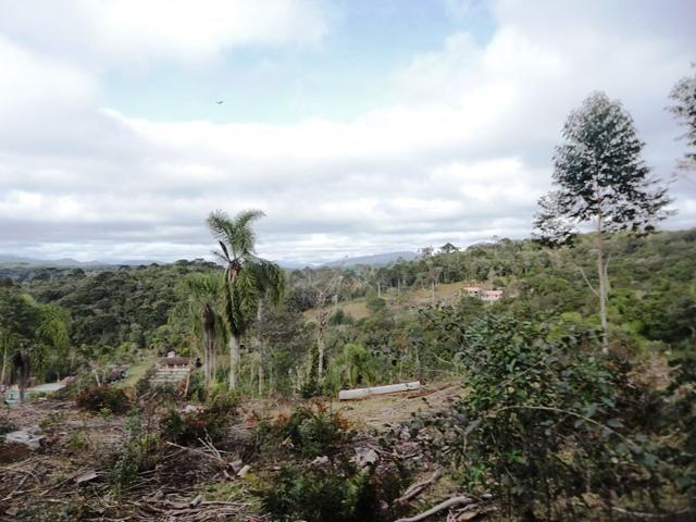 Chácara à venda em Serne de baixo, Bocaiúva do sul cod: * - Foto 2