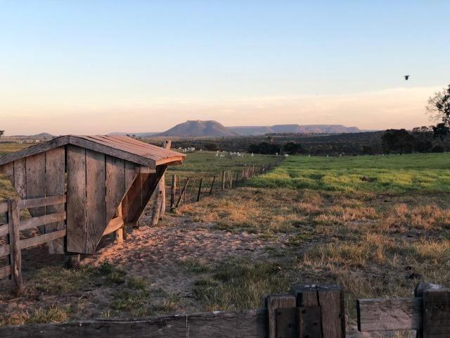 Nova Taquari MT Fazenda a 60 km da cidade com 2.480 hectares em pasto - Foto 17