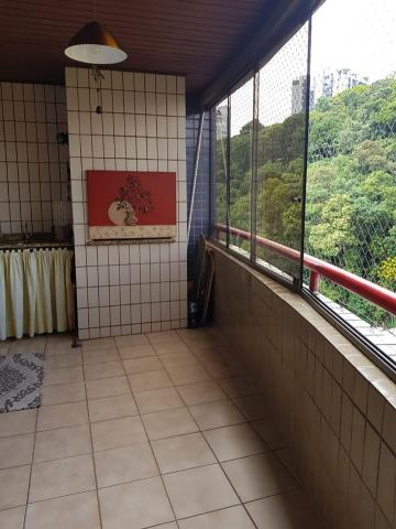 Apartamento no américa | 01 suíte + 03 dormitórios | andar alto | semi-mobiliado - Foto 7