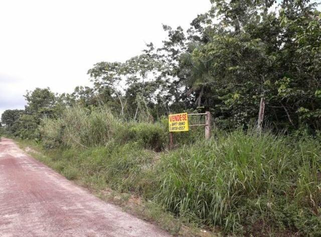 Terreno agrícola (Não tem igarapé) - Foto 2
