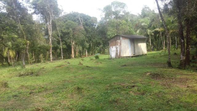 Chacrinha em Guaraqueçaba - Foto 2