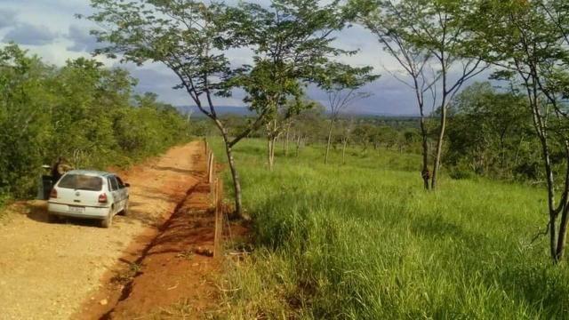 Fazenda Ribeirão - Foto 3