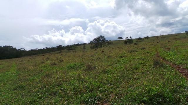 Sítio 22 hectares em Planalmira - Foto 16