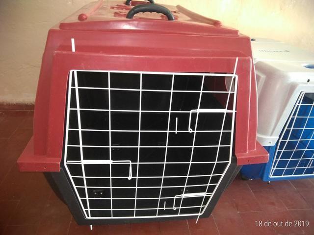 Caixa de Transporte Aéreo N5 ( Cães de Grande Porte ) - Foto 2