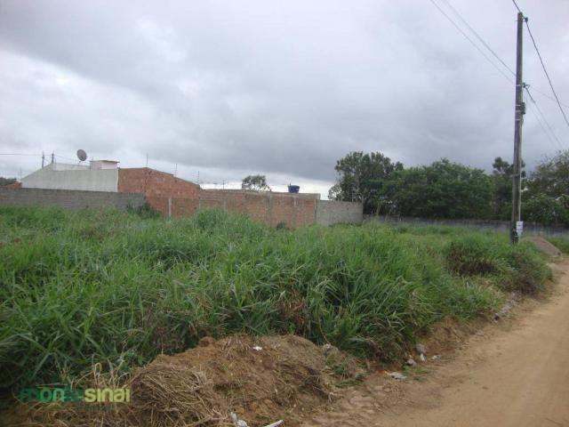 Terreno à venda, 220 m² por R$ 45.000 - Manoel Camelo - Garanhuns/PE - Foto 5