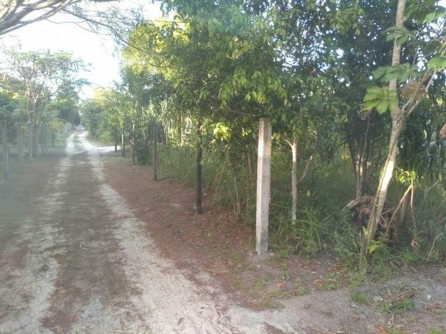Terreno no Distrito de Curralinho, próximo a Sauípe - Foto 3