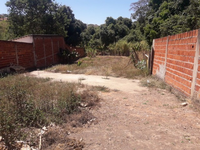 Rua 1 Colonia Agricola Samambaia - Foto 7