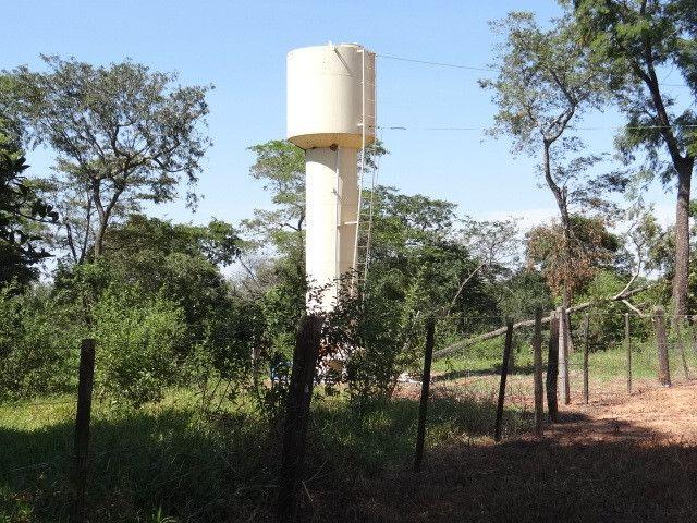 Fazenda de Pecuária 917 hectares - Foto 13