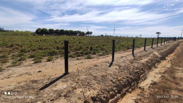 Vende-se Fazenda à 49 km de Porto Velho área com 115 hectares  - Foto 10