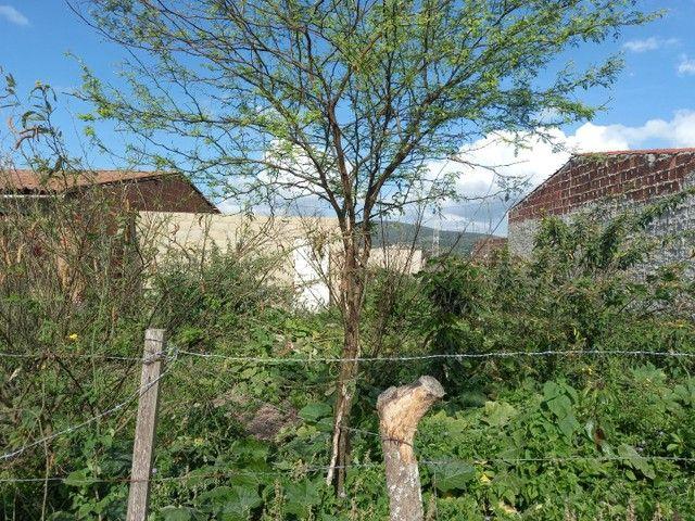 Casa e terreno  - Foto 5