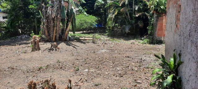 Terreno Plano Pereque Parque Mambucaba 75.000,00 350M² - Foto 15