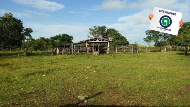 Fazenda na região livramento - Foto 2