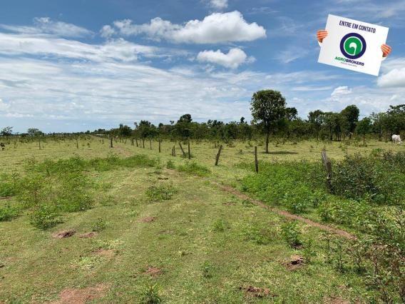 Fazenda 100 ha região de bom jardim - Foto 4