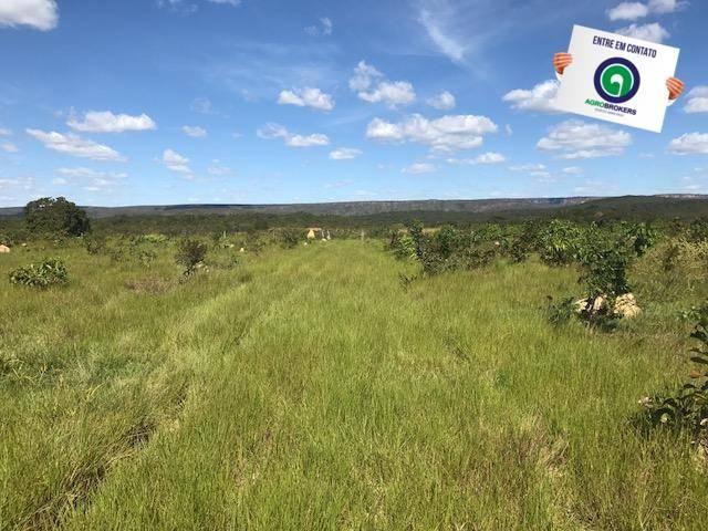 Fazenda 1000 ha no manso - Foto 8