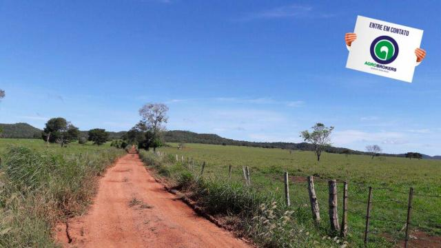 Fazenda 1.650 ha sentido caceres - Foto 17