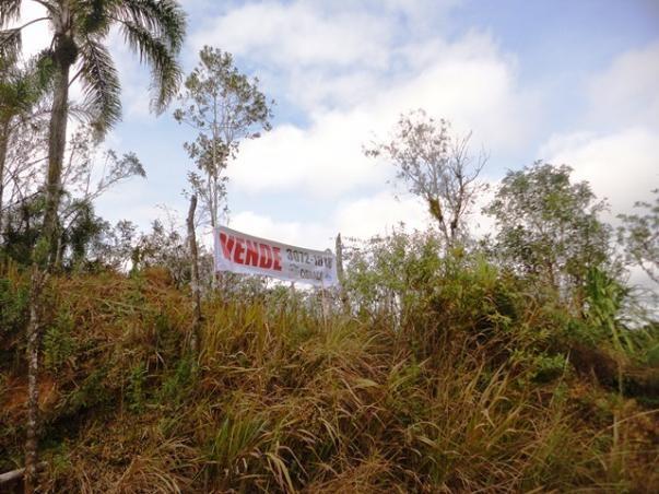 Chácara à venda em Serne de baixo, Bocaiúva do sul cod: * - Foto 3