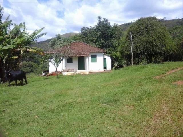 Fazenda para Venda em Carvalhos, Rural - Foto 4
