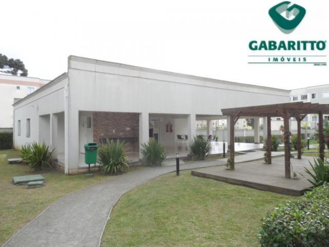 Apartamento para alugar com 2 dormitórios em Pinheirinho, Curitiba cod:00419.001 - Foto 15
