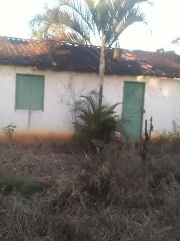 Vendo fazenda em Gandu BA - Foto 6